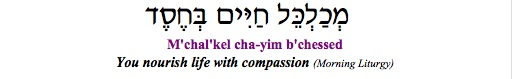 """""""M'chalkel chayyim b'chesed - You nourish life with compassion"""" (Liturgy)"""